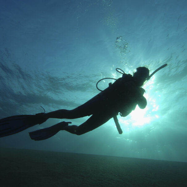 One scuba diver wearing scuba equipment, swimming underwater, light shining through water surface, low angle view