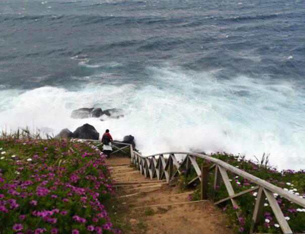 Azores, Hiking Ribeira Funda 2