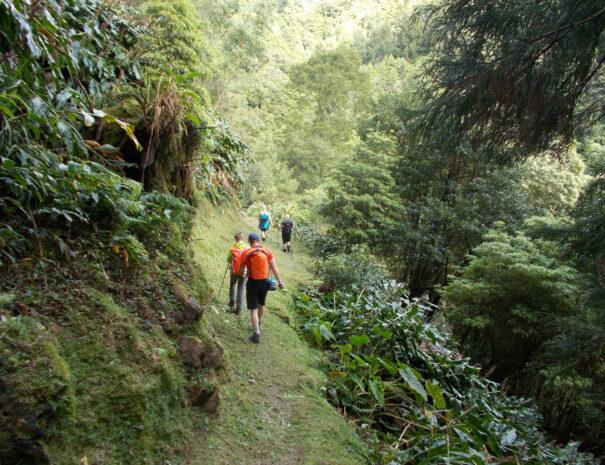 Azores, Hiking Sanguinho 2